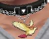 pidgeot collar