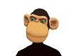 MonkeyHeed