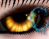 *c* Golden Eyes