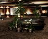 Mall Palm Plant