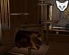 [NW]Cat base