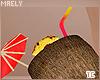 м| Summer .Coconuts