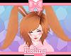 🎀 Bunny ears fox