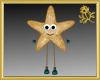 Starfish Avatar