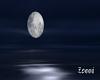 Z: Zen Beach