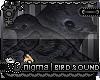 [?] Eclipse Dark Bird
