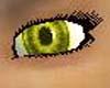 Aztec Eyes (f)