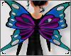 ♥ Wings