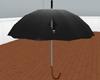 Porco Tearing Umbrella
