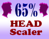 Resizer 65% Head