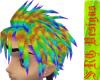 Manly Rainbow