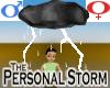 Personal Storm -v1a