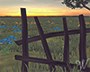 Sundown Fence