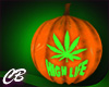 CB HighLife Pumpkin