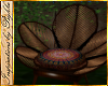 I~Gypsy Flower Chair 40%