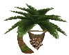 LEOPARD PALM TREE SWING