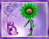 Bou St Patricks Flower