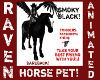 SMOKY BLACK PET HORSE!