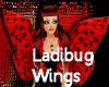 LadiBug Wings