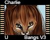 Charlie Bangs V3
