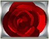 ~Derivable Rose Earrings