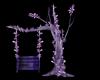 garden pierrot