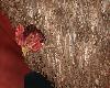 Hen in beard