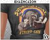 #street cats