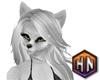 silver hair wolf furry