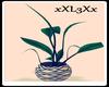 *L3* Plants