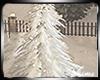 K*Winter Tree