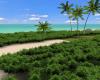 Island Resort Room Base