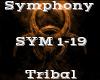 Symphony -Tribal-