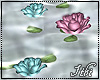 -Ith- Water Roses