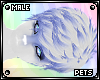 [Pets] Ferre | hair v4