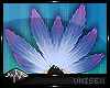 `| Neko Tails - Blur