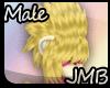 [JMB] Rhinokey Jongan