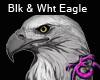 Blk & Wht Eagle