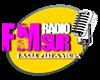 REPRO RADIO FMSUR