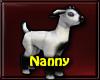 ~R Nanny