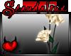 |Sx|Golden rose