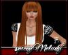 Aloe Ginger Spice