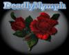 *DN* Rose