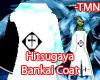 Hitsugaya Bankai Coat