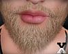 ♛.Beard.BL.