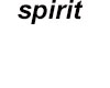spirit neck lace