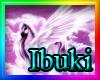 Evangelia B/Rainbow