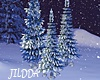 J~ Snow Pine Trees