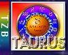 TZB Taurus