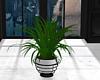 JV Plant #32